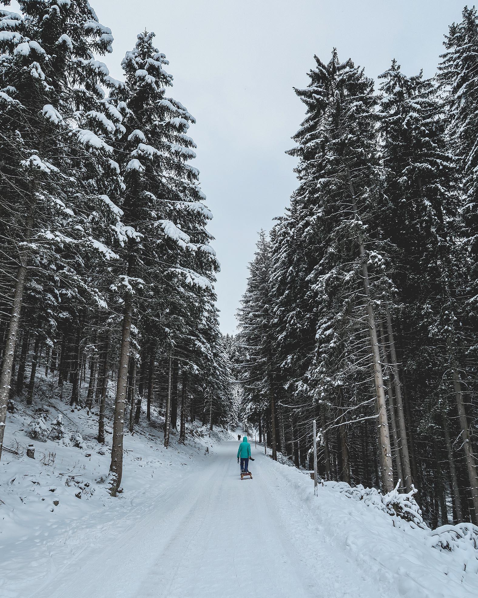 harz-in-niedersachsen-wintersport-rodeln