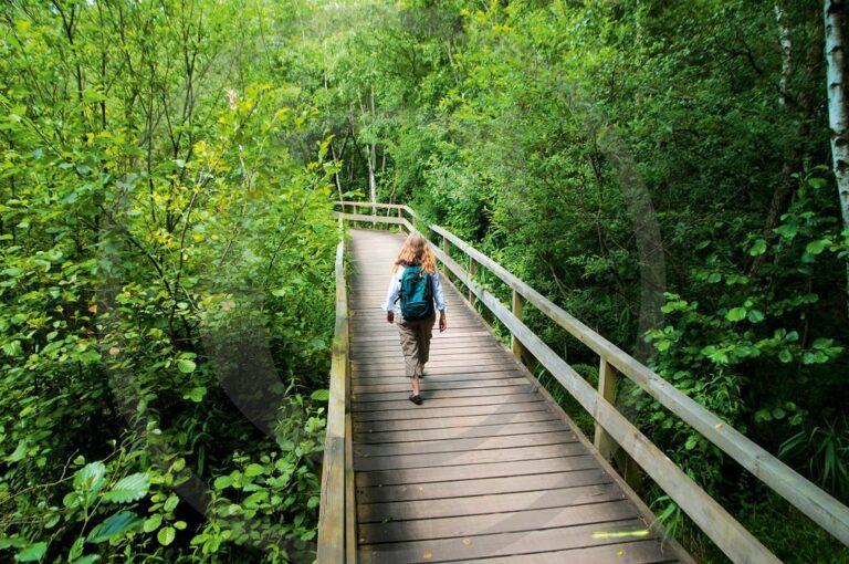 Wandern in einem von vielen Naturschutzgebieten in Niedersachsen