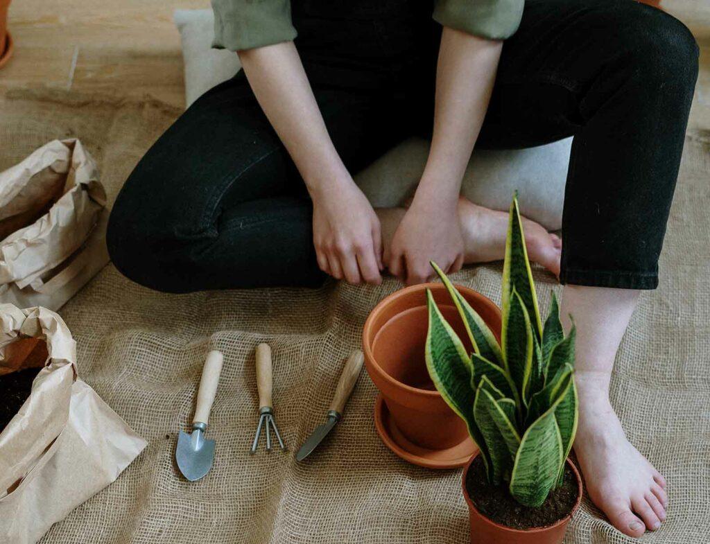 Hobbys finden anpflanzen