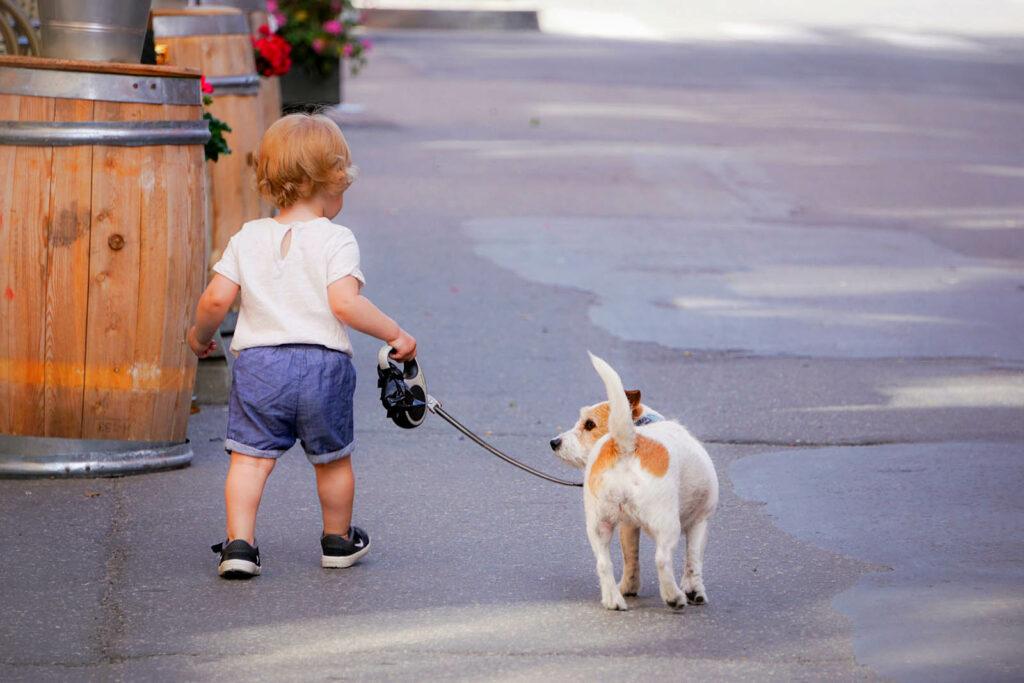 Hund und Baby aneinander gewoehnen