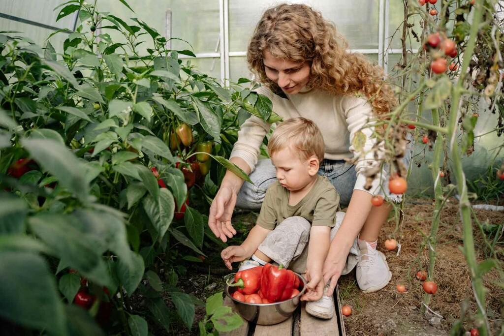 umweltbewusstsein im familienalltag