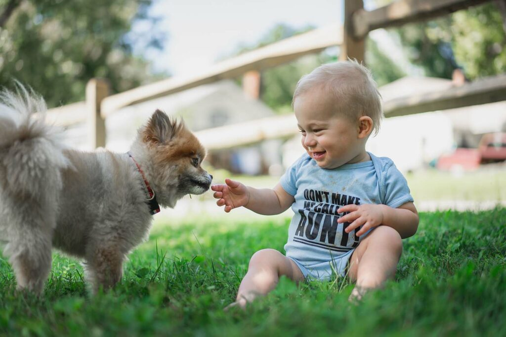 Hund an Baby gewoehnen