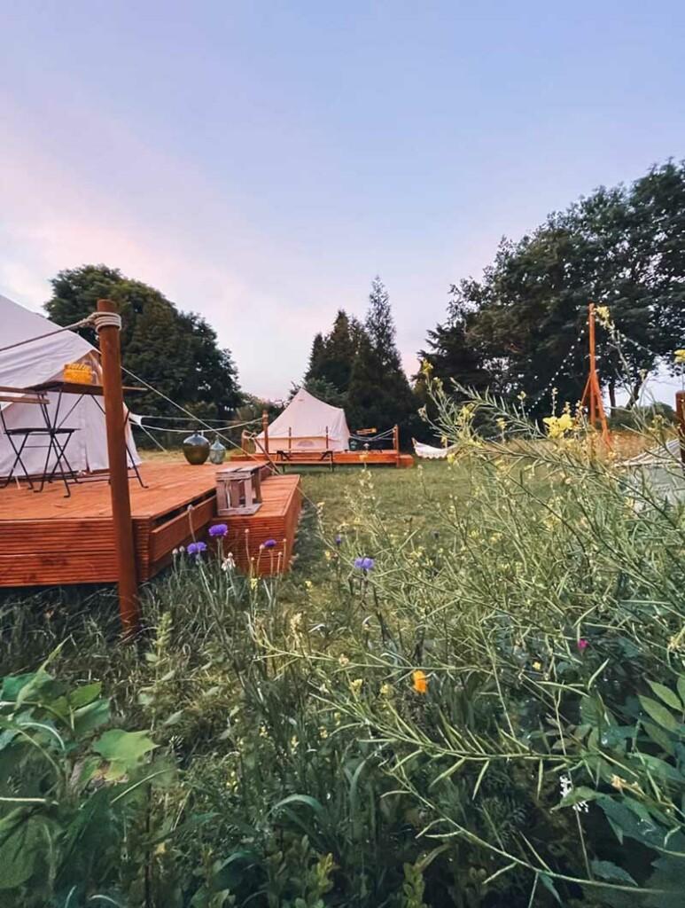 Hofwiese mit Zelten