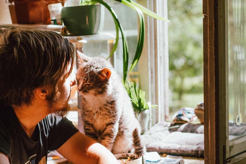Junger Mann kuschelt Kopf an Kopf mit seiner Katze