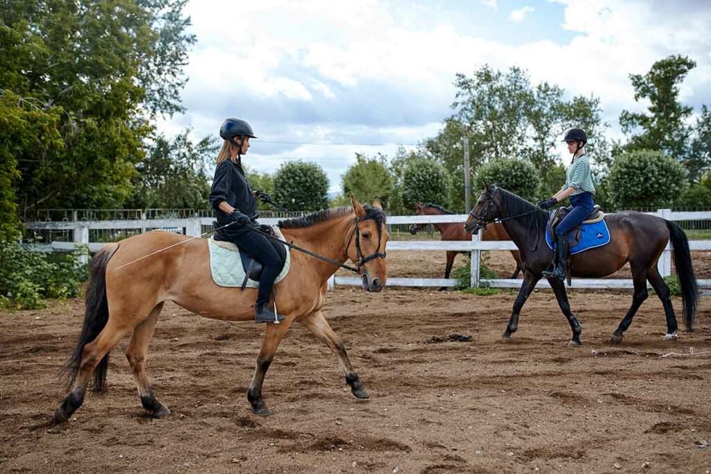 Reittraining mit Pferden auf dem Reitplatz
